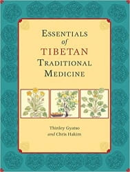 Essentials of Tibetan Traditional Medicine - Thinley Gyatso & Chris Hakim